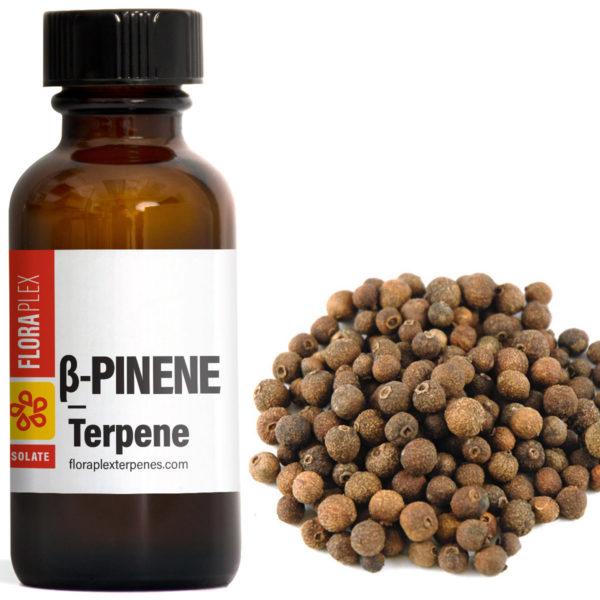 Beta-Pinene - Floraplex Terpenes