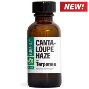 Cantaloupe Haze Terpene Blend - Floraplex 30ml Bottle [New Tag]