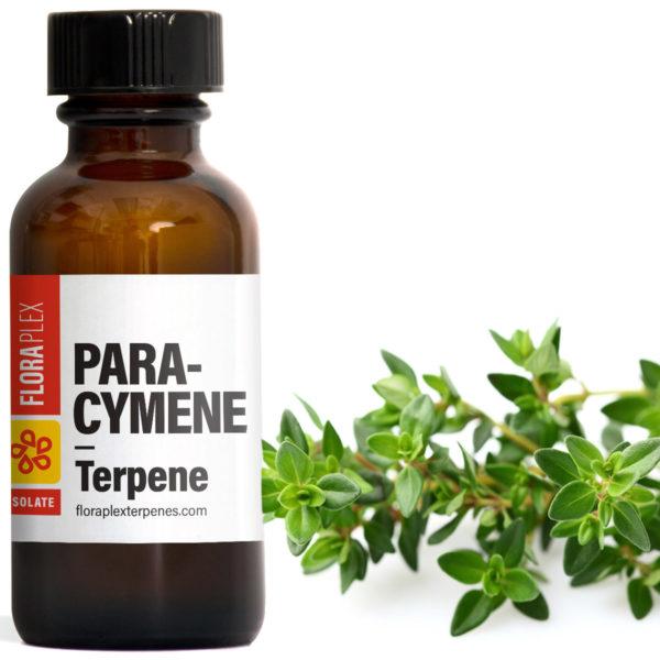 Para-Cymene - Floraplex Terpenes