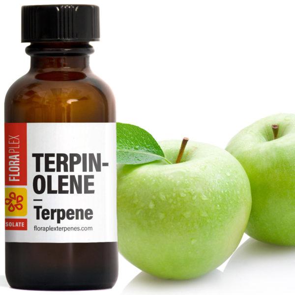 Terpinolene - Floraplex Terpenes